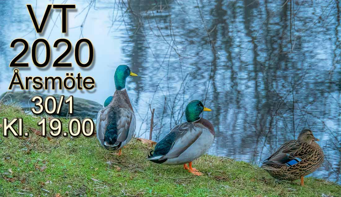 VT-2020_Årsmöte_WEB_1021139-Redigera-1